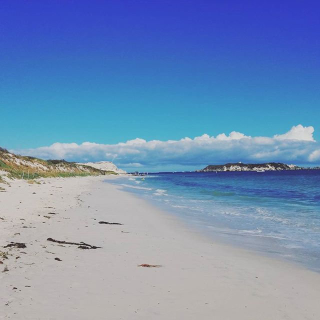 Beach daze  #hellonature #endlesssummer #beach #hamelinbay #westernaustralia