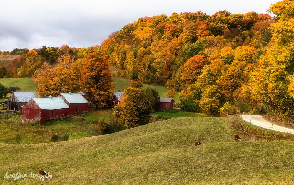 Jenne Farm, Woodstock, VT
