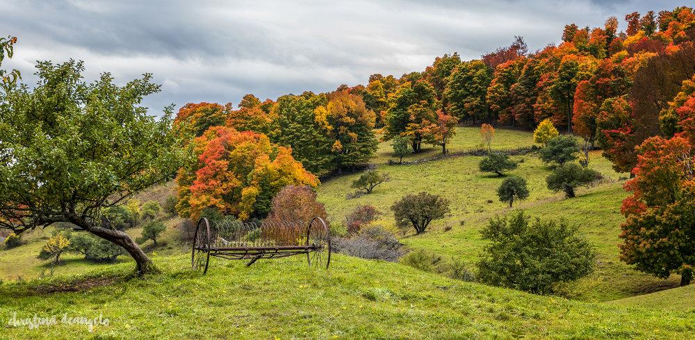 Abandoned Farm Tool, Cloudland Rd, Woodstock, VT