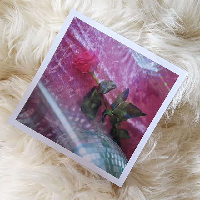 """One of my pieces for @useraustralia project #onehundreddifferentartistcoversandvinylcolours  Each one of User's debut album """"Dimensions, Prisms and Waves"""" has a different cover and colour vinyl! So amazing! I made 3 rose themed pieces of course 🌹#rose #USER #useraustralia #pink #film #35mm #photography #art #ishootfilm #kalindywilliams"""