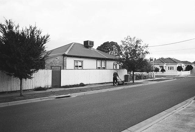 Time 2 Mow  #35mm #film #suburbia #melbourne #blackandwhite #mow #ilford