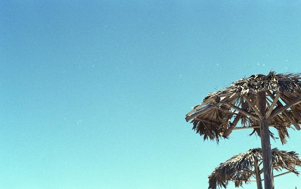 [T][F] Pentax K1000 - KodakGOLD 200 II - Push +1 - 009.jpg
