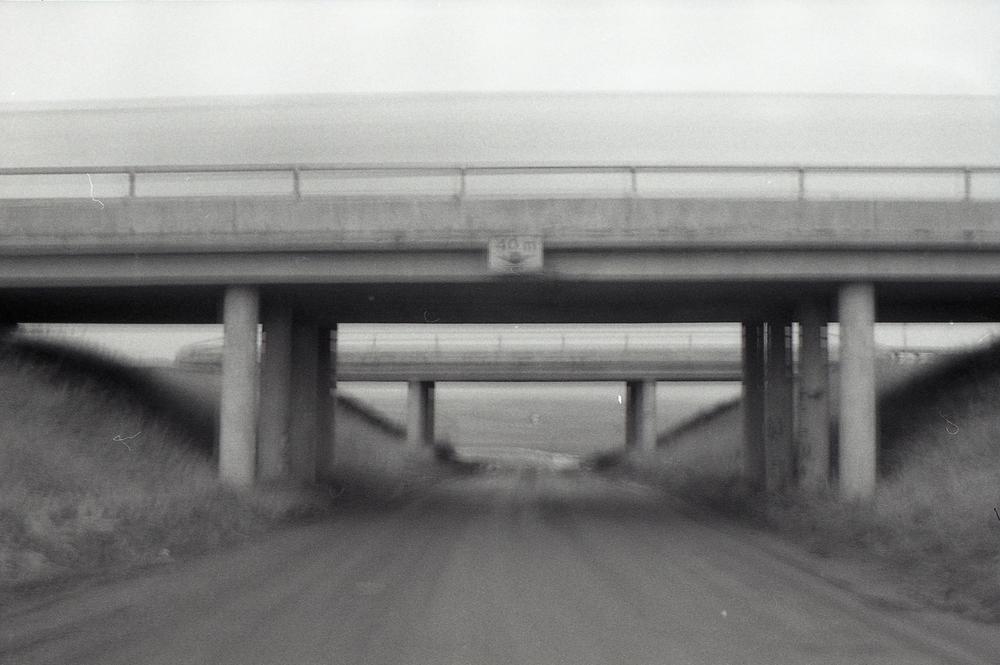 007 [T][F] Pentax K1000 - Kodak X-Pan 125 - 006.jpg