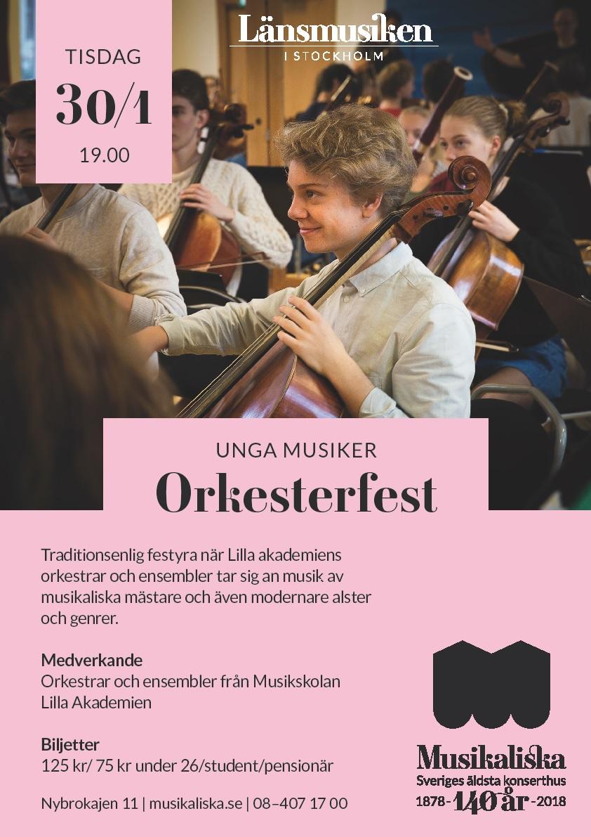 Orkesterfest vt 2018 2.jpg