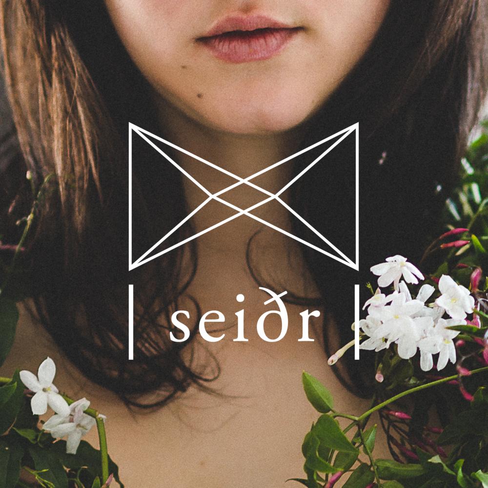 LSS_logo_demos_seidr.png