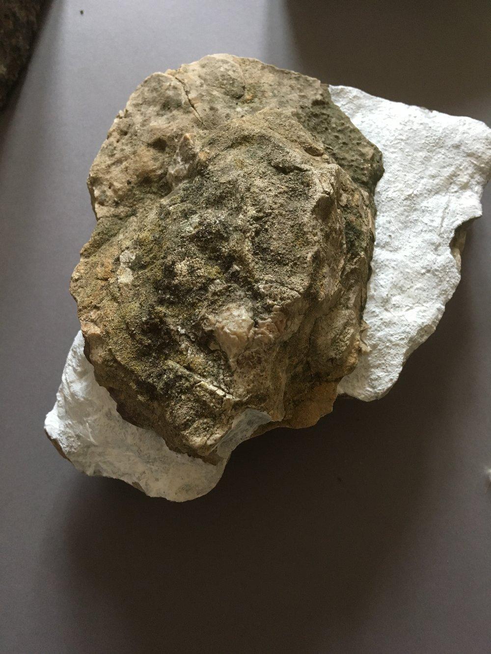 stone one.JPG