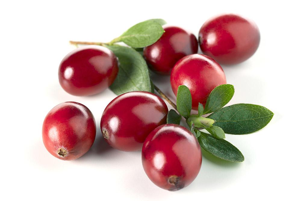 bildarchiv-fruechte-cranberrys.jpg