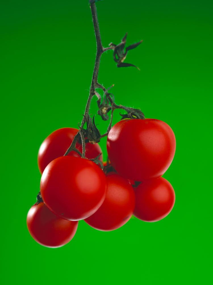 bildarchiv-gemuese-tomaten-03.jpg