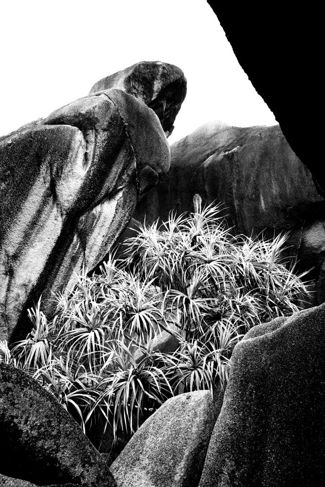 bildarchiv-reisen-seychellen-03.jpg