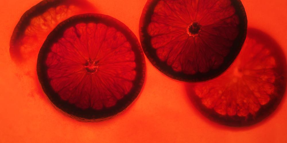 Fotowerk Lampelmayer GmbH - Foodfotografie - Orangenscheiben