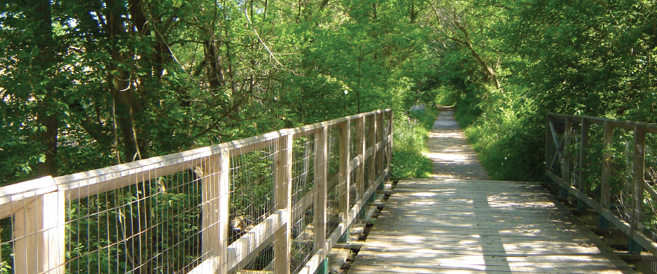 LYNN-VALLEY-TRAIL-BRIDGE-PROJECT.png