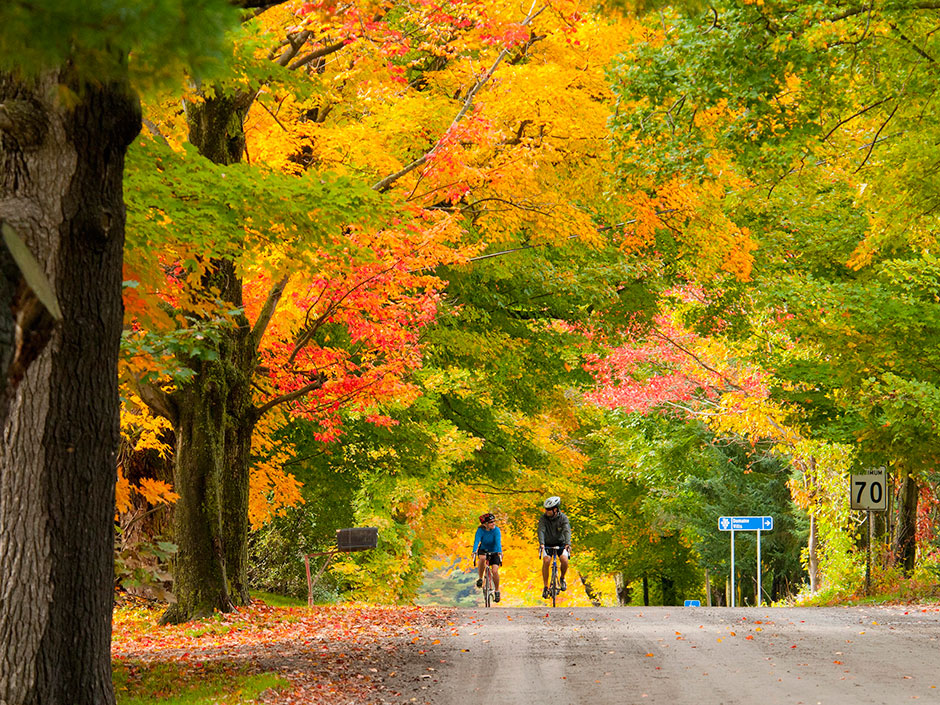 travel_log_fall_colours_20150907_39813629.jpg