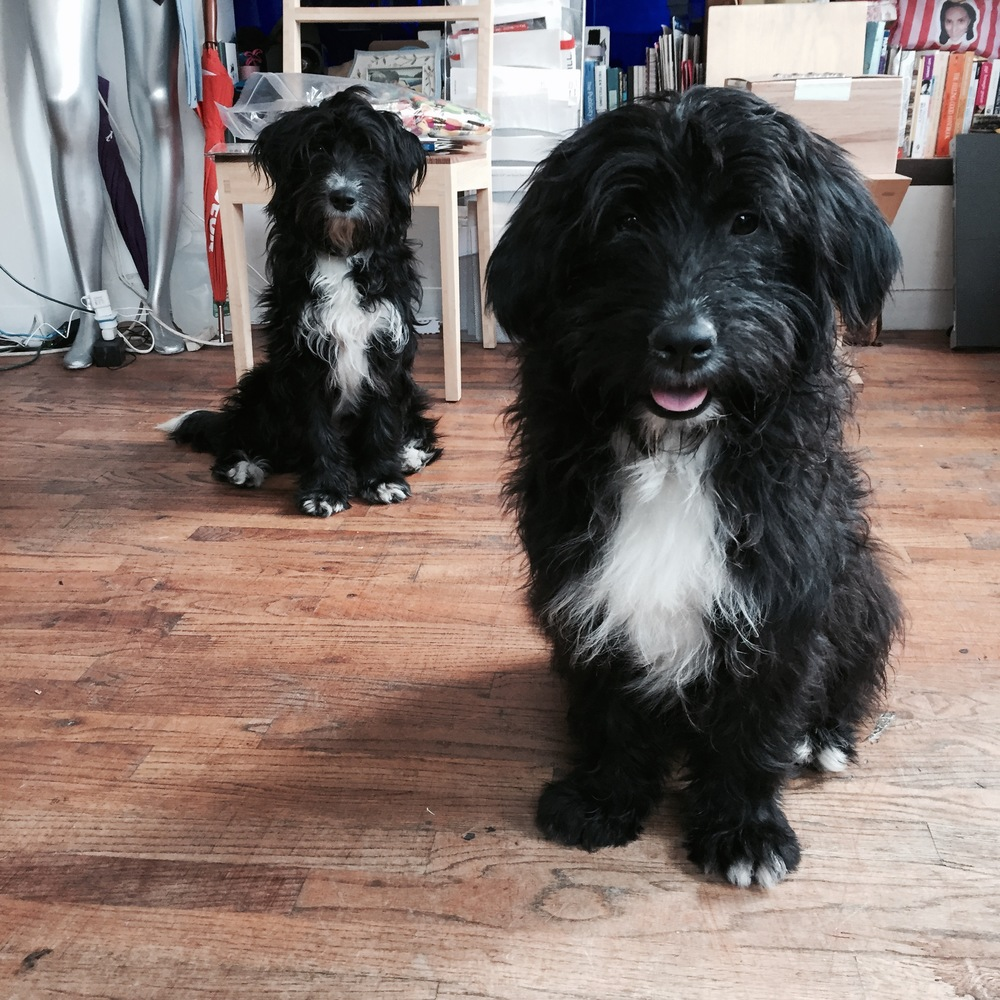 Annie and Otis. Photo courtesy: Collab