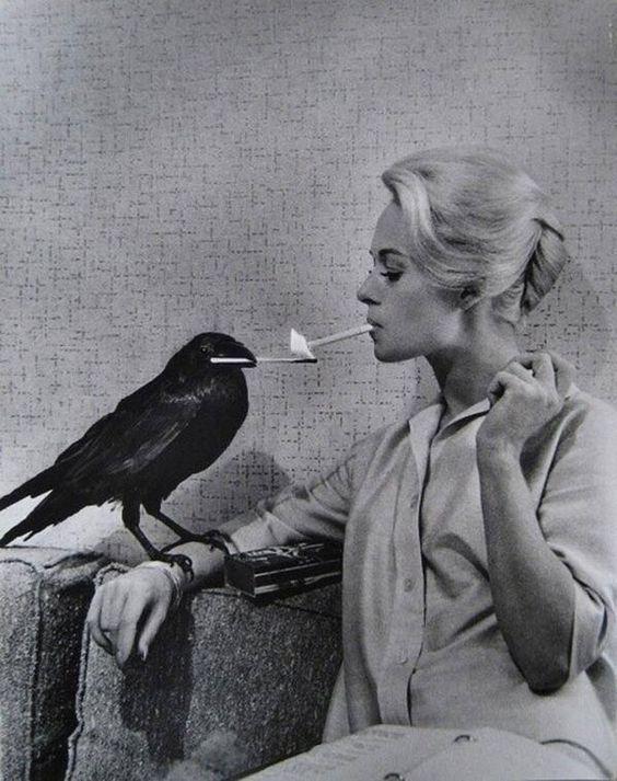 Tippi Hedren en train de fumer sa cigarette allumée par un corbeau sur le plateau de Les Oiseaux, 1963 -