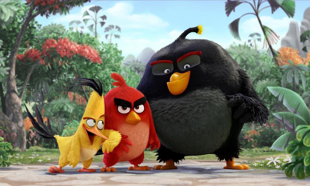 Los pájaros con problemas de mal genio llamado Red, el veloz Chuck y el volátil Bomb nunca han terminado de encajar en su isla de aves no voladoras. Ellos luchan por adaptarse en ese paraíso, pero se sienten marginados. Pero la llegada de los misteriosos cerdos verdes a la isla va a generar problemas. Cuando el rey Pig y toda la piara malvada ha planeado una meticulosa estrategia para conseguir los huevos tan preciados de los pájaros, ellos tres serán los que descubran lo que la banda porcina estaba planeando. Juntos decidirán contraatacar con un arriesgado plan en el que tendrán que luchar y dar lo mejor de sus increíbles capacidades para salir victoriosos.