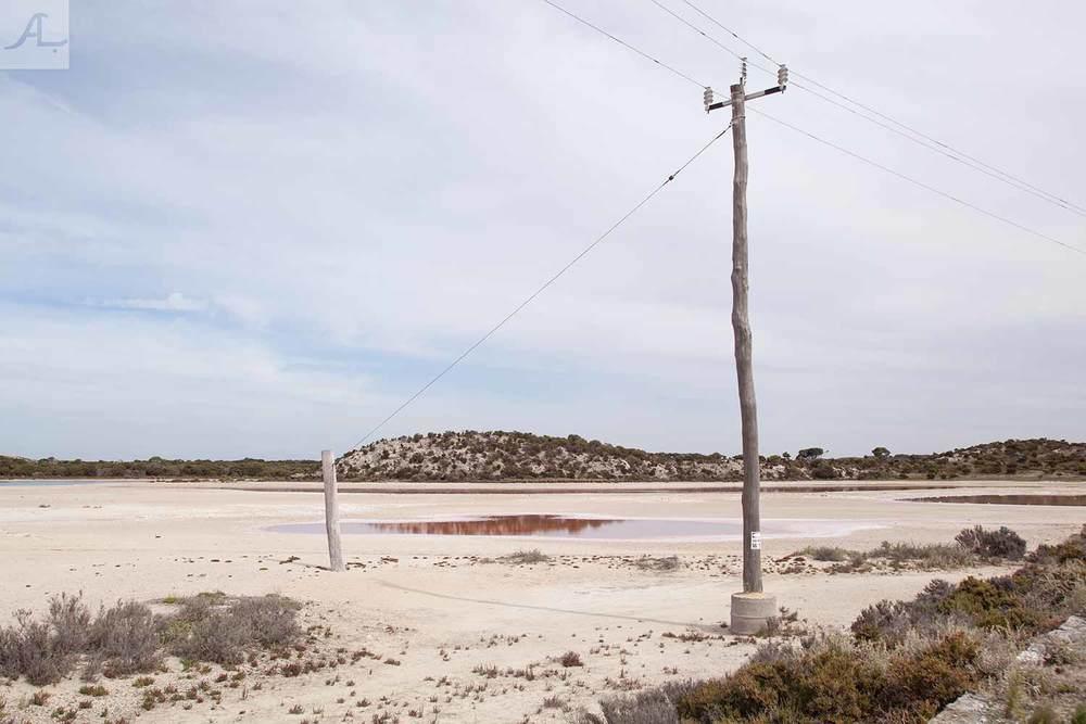 3-amy-lobb-rottnest-island-1.jpg
