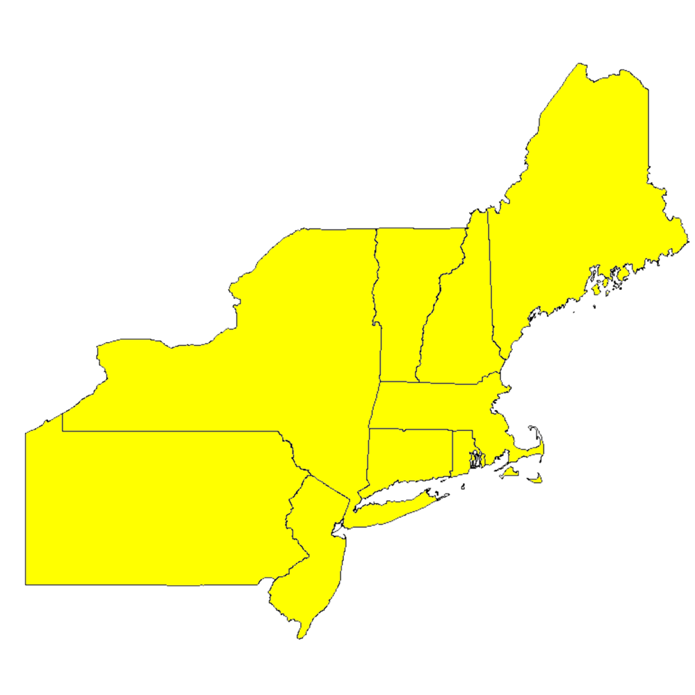 northeast-region_yellow.png