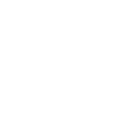 I AM | IDD Assessment | LCDX | Life Care Data Exchange