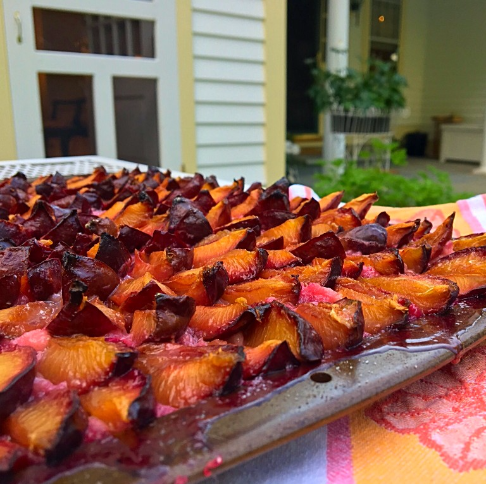 Oma's Plum Cake