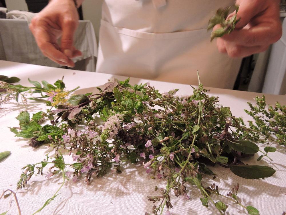 flowering_herbs.JPG