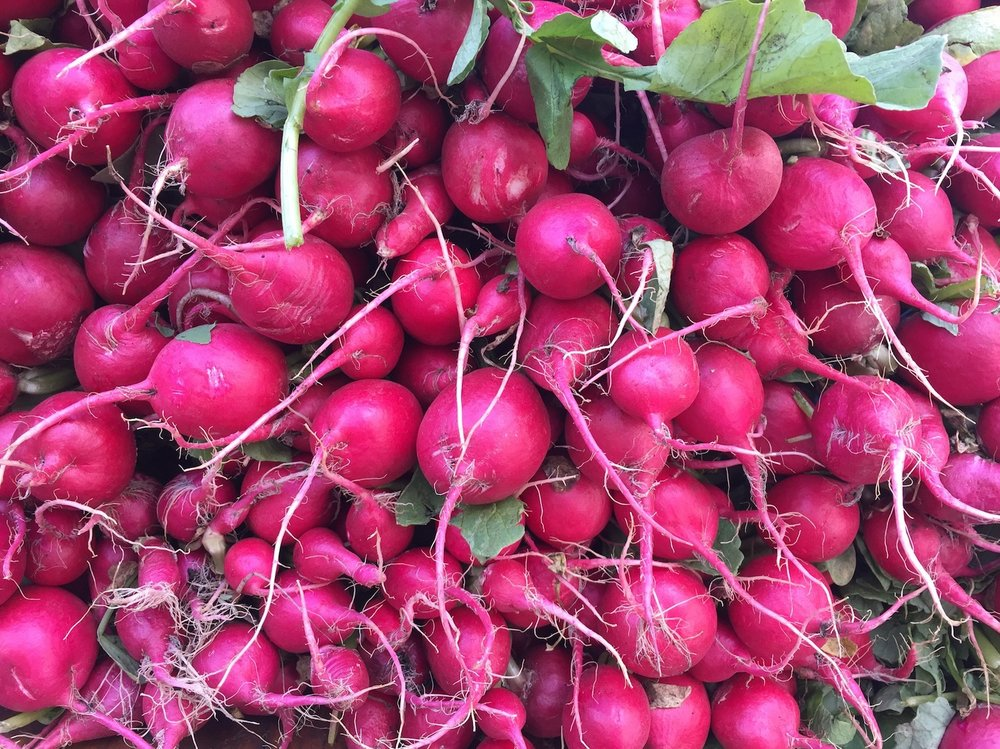 radishes_farmers_market.JPG