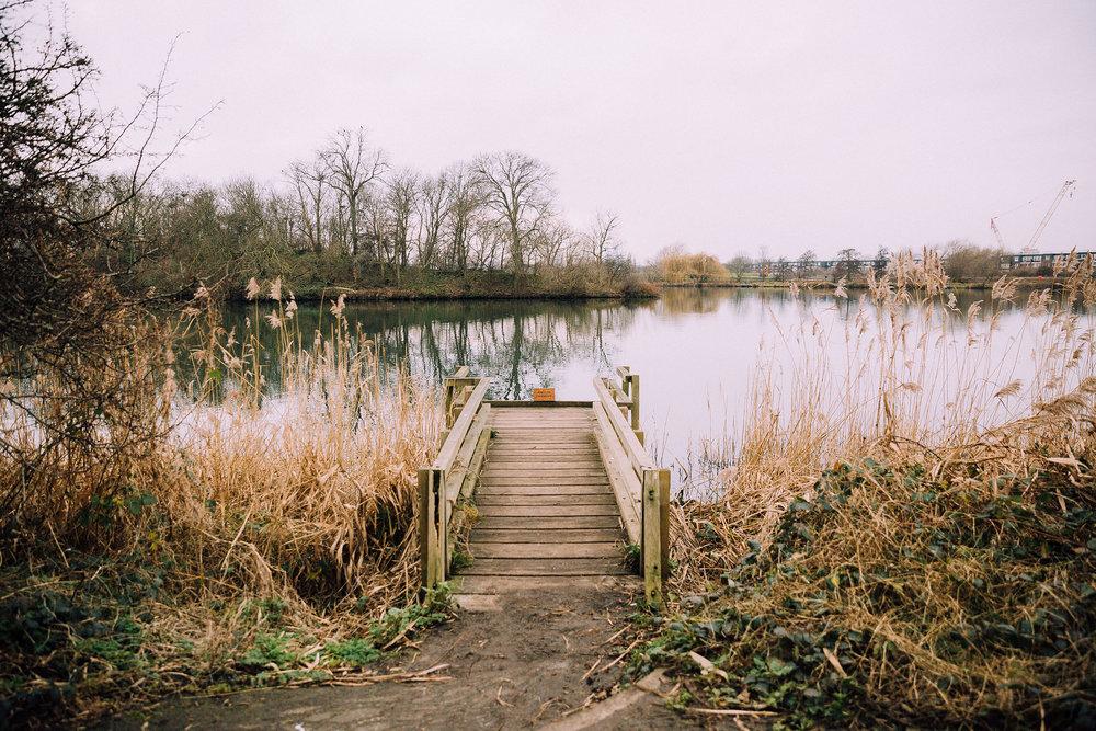 Walthamstow_Wetlands_Jan18-(7-of-15).jpg