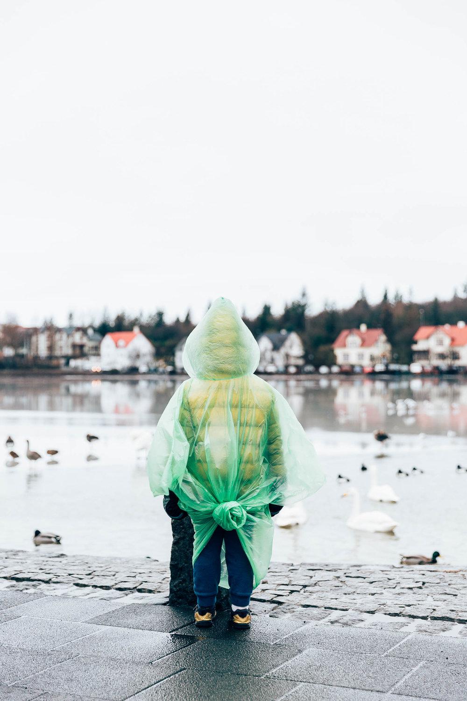 02_2019_Iceland-39.jpg