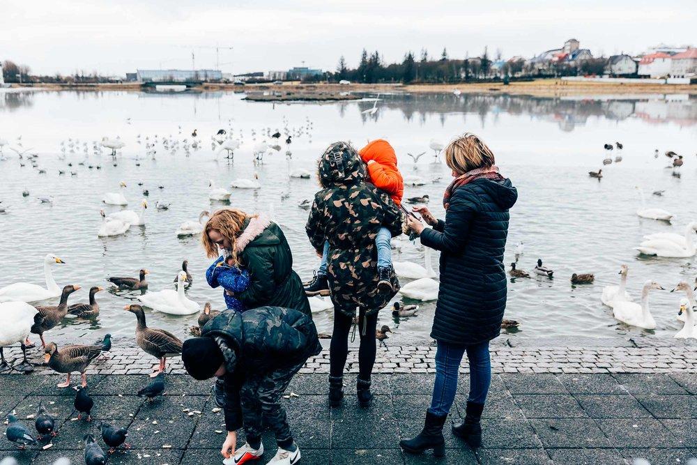 02_2019_Iceland-49.jpg
