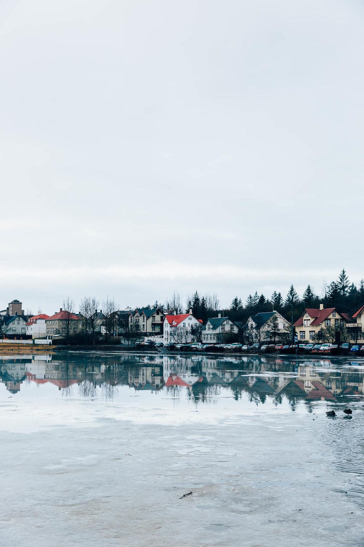 02_2019_Iceland-54.jpg