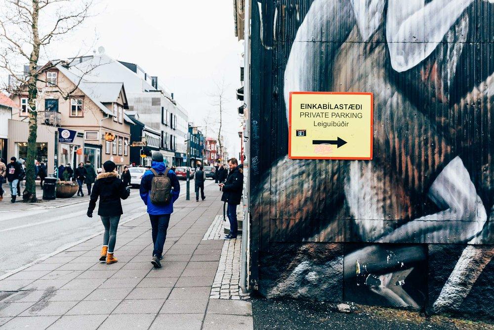 02_2019_Iceland-105.jpg
