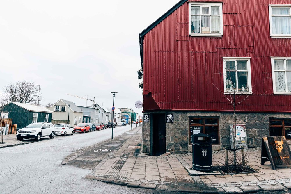 02_2019_Iceland-106.jpg