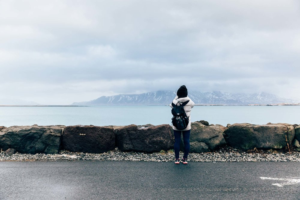 02_2019_Iceland-109.jpg