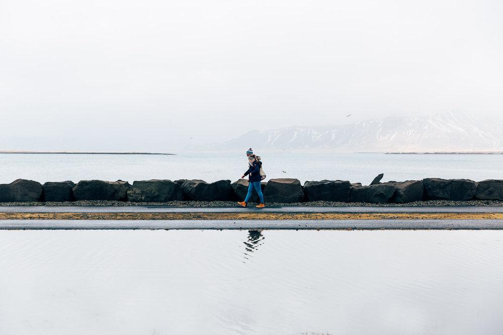 02_2019_Iceland-135.jpg