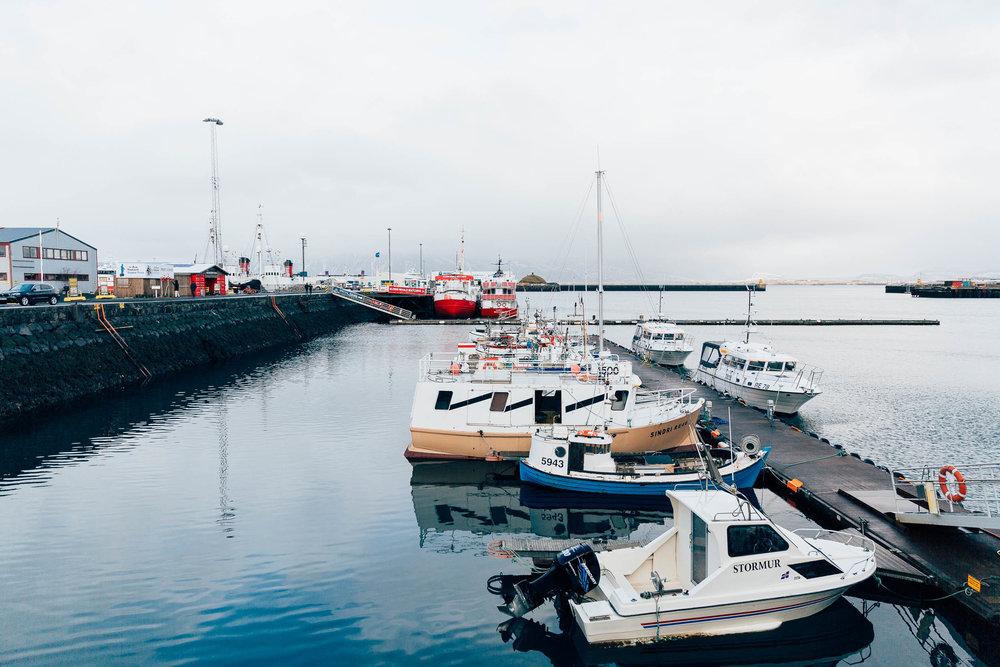 02_2019_Iceland-144.jpg