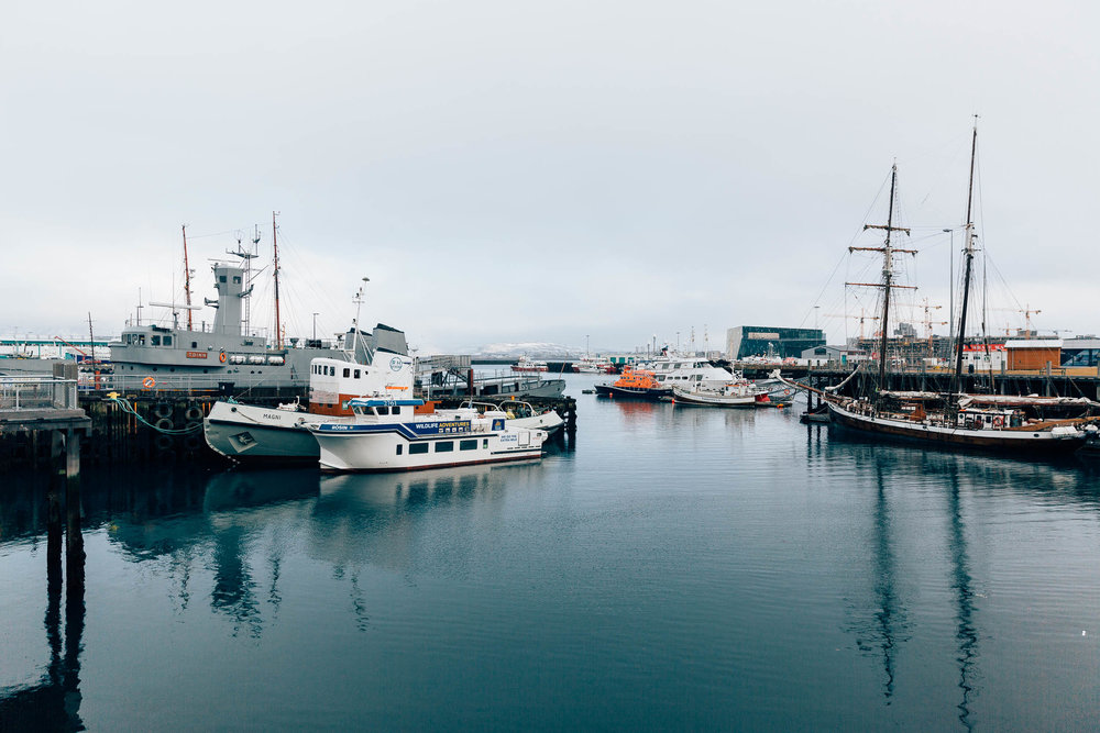02_2019_Iceland-146.jpg
