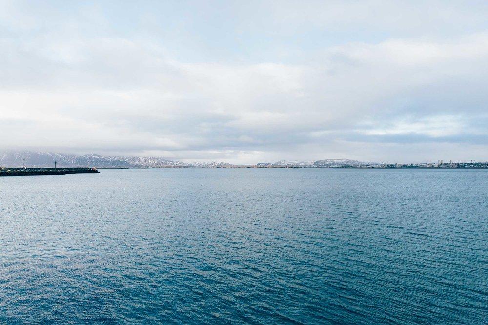 02_2019_Iceland-151.jpg