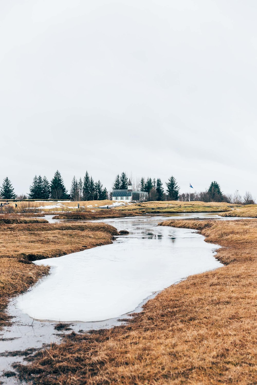 02_2019_Iceland-269.jpg