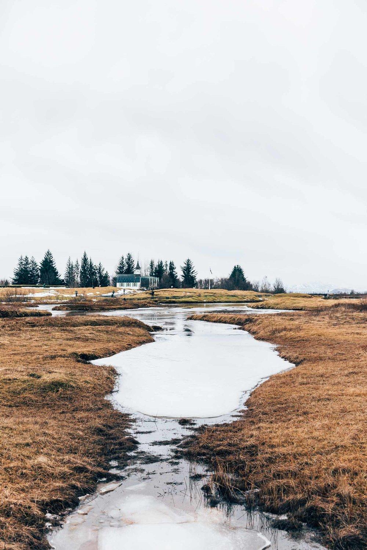 02_2019_Iceland-275.jpg
