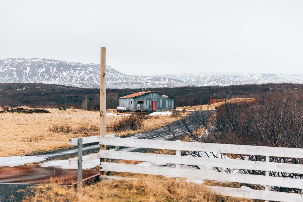 02_2019_Iceland-291.jpg