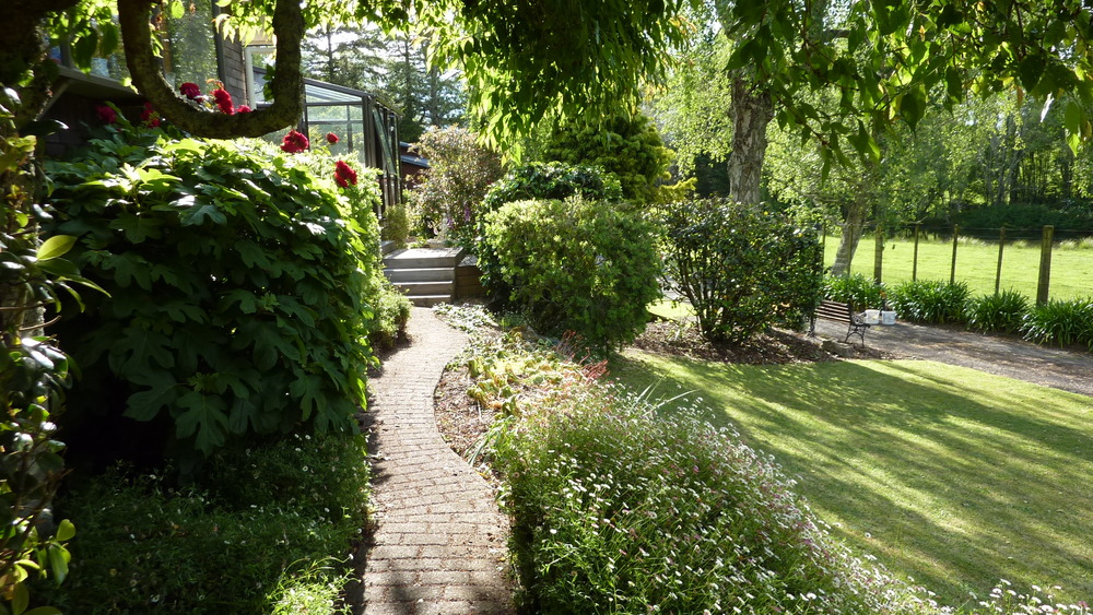 Path leading to deck, conservatory and house at Mokoia Downs.JPG