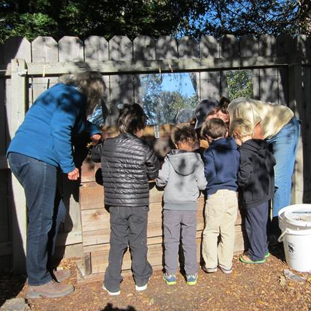 children exploring our worm bin with Naturalist Julie