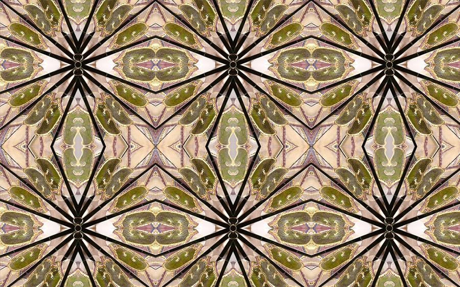Ojibwe Lavender & Sage