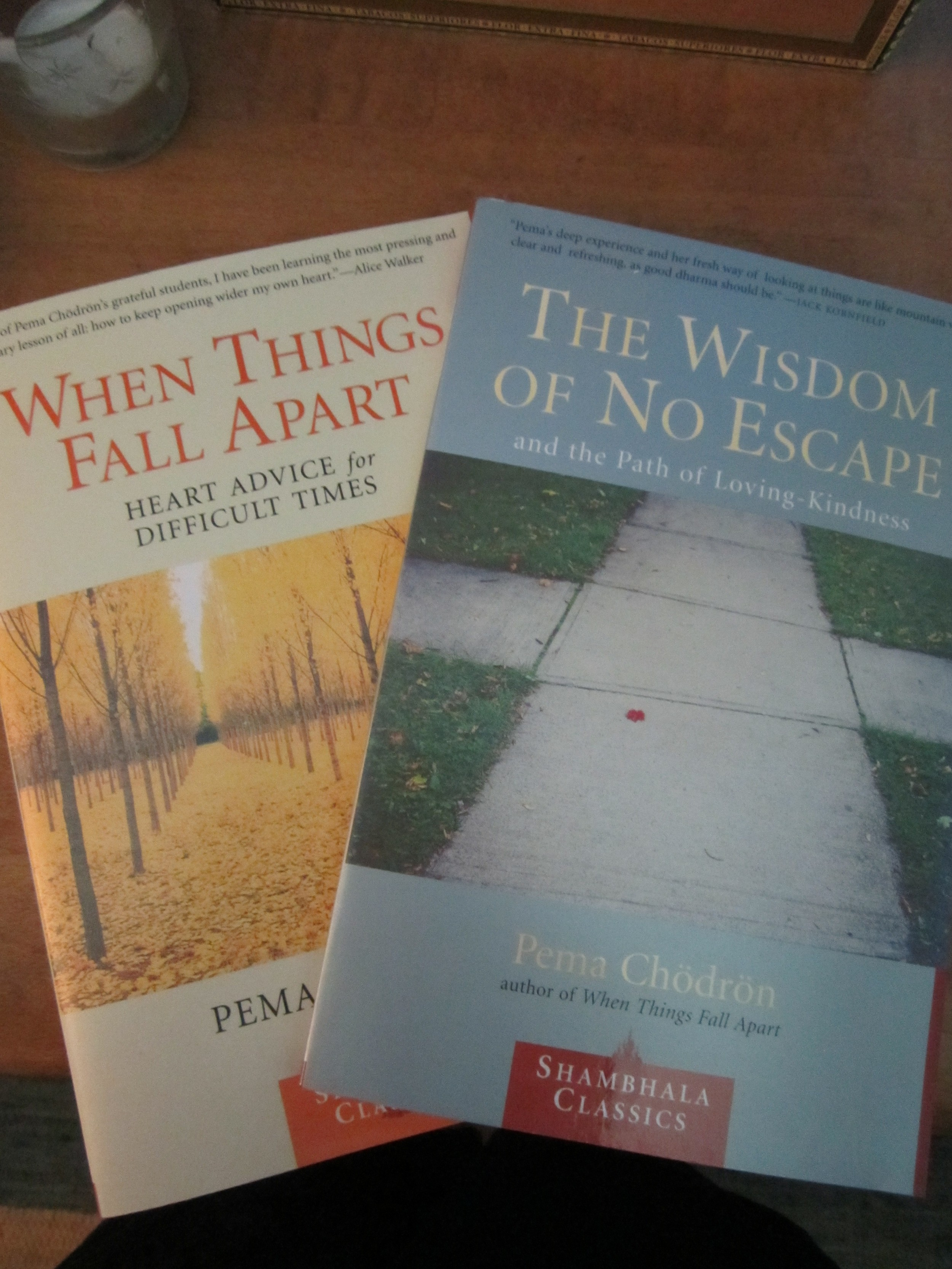 Pema's Books!