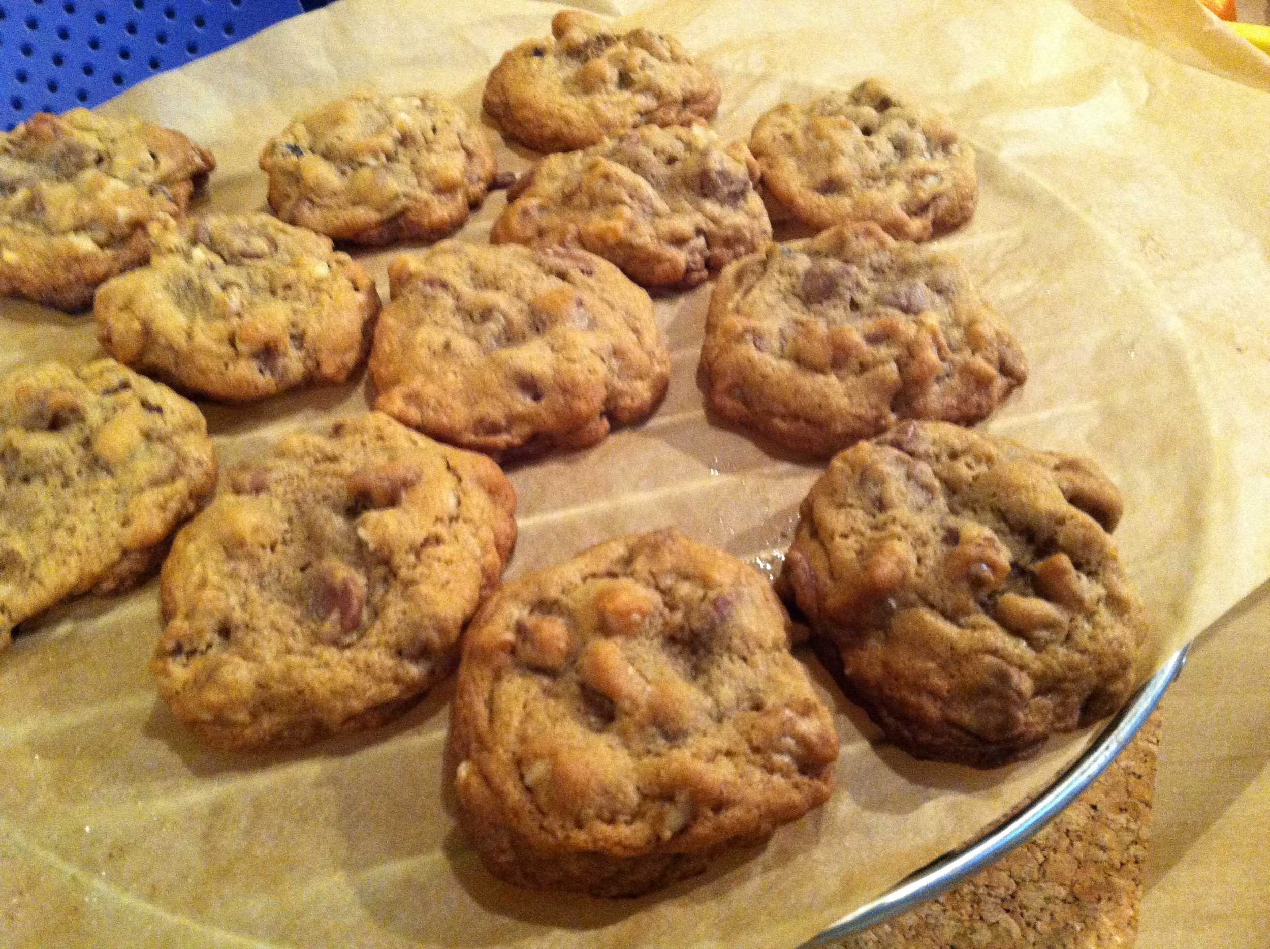Alisha's Milk Chocolate Chip Walnut