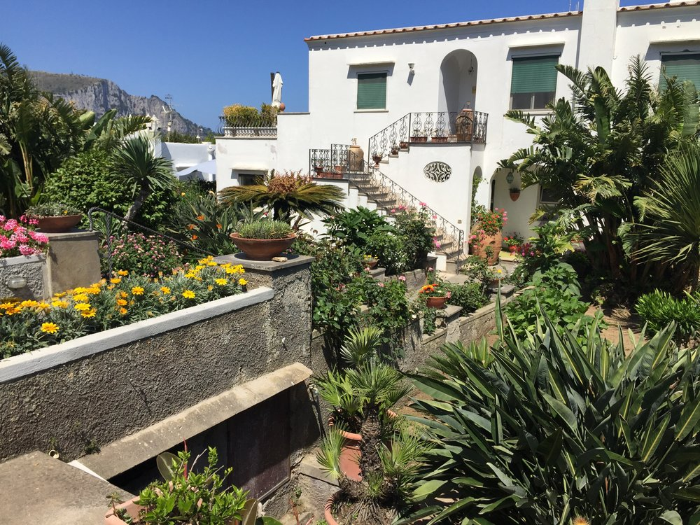 Backyard in Capri, Italy