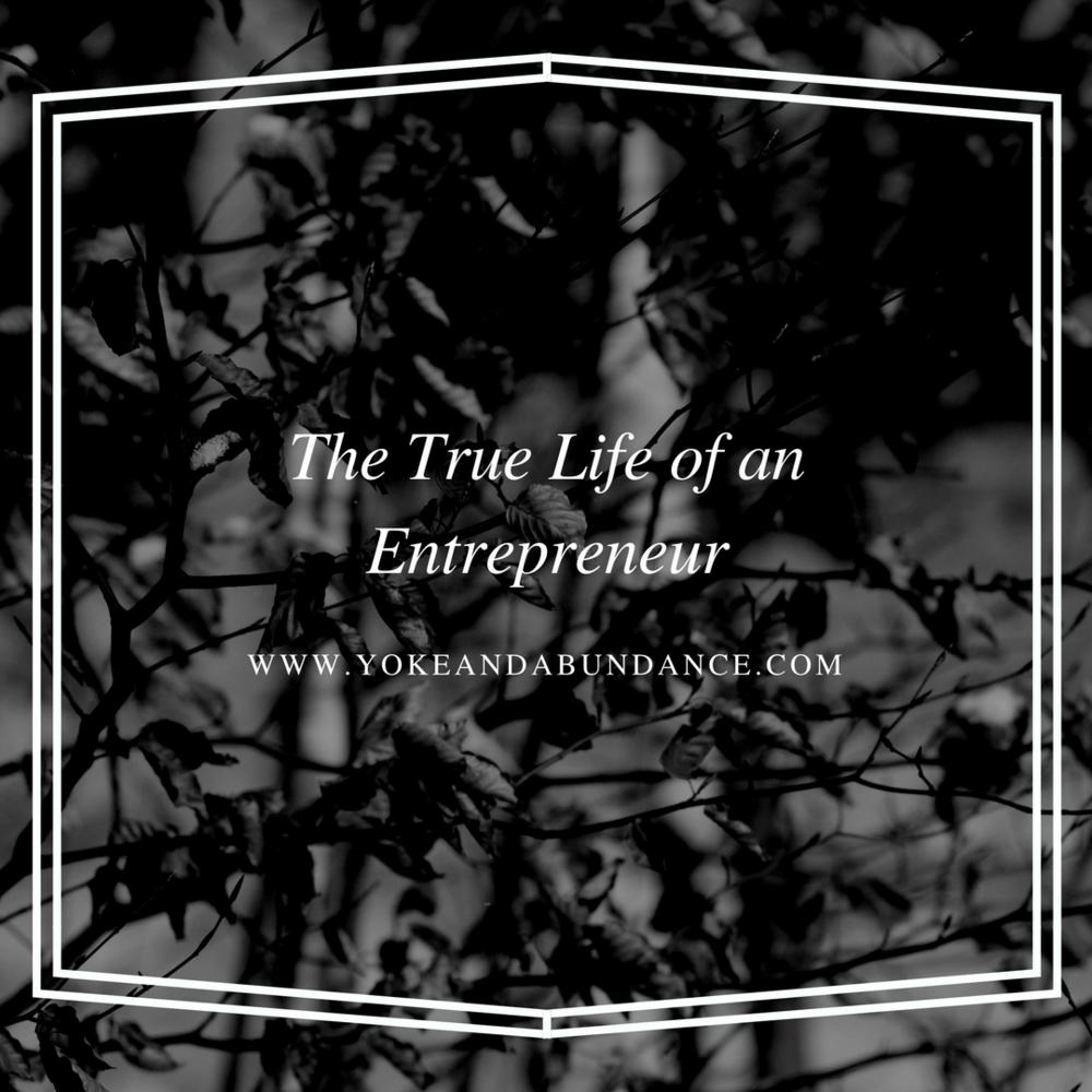 The true life of an entrepreneur