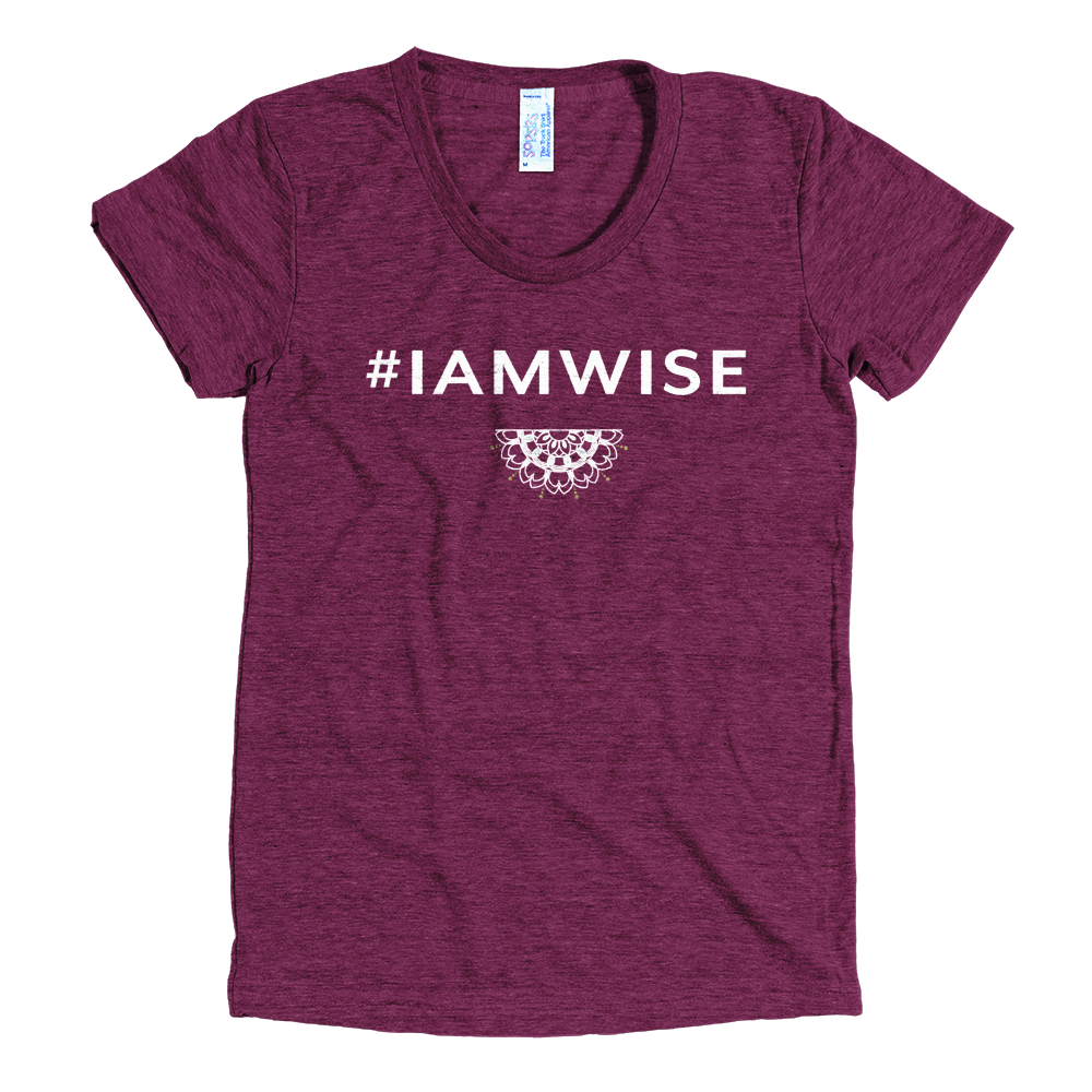 6820feedd2d Yoke and Abundance  IAMWISE American Apparel T-Shirt Tri-Cranberry — Yoke  and Abundance
