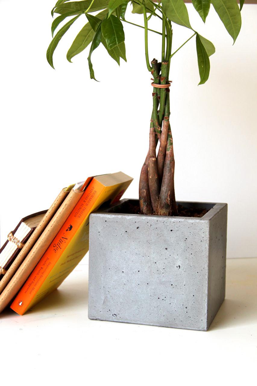 OrganiCrete® Concrete Planter