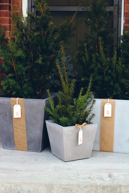 OrganiCrete® Concrete Planters