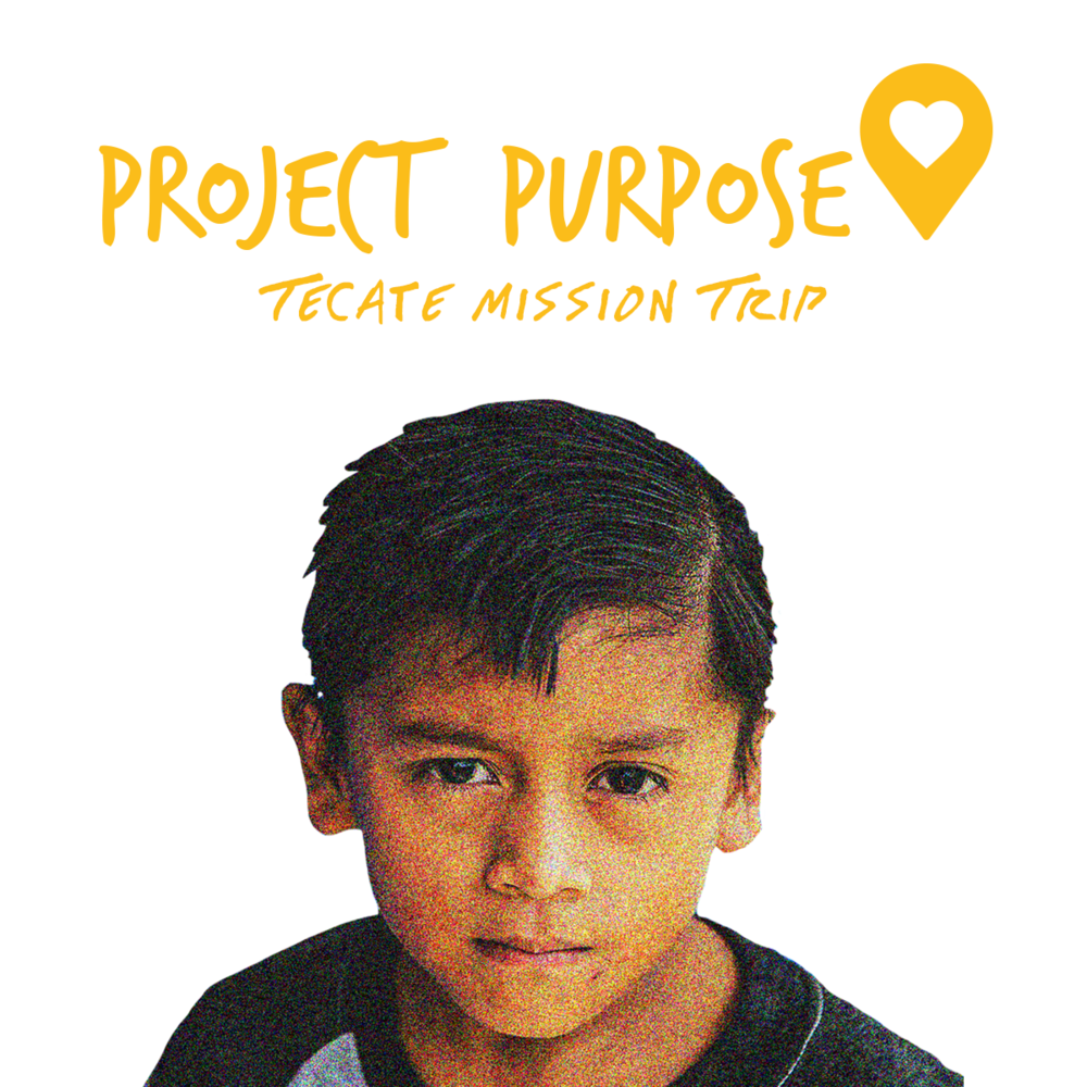 ProjectPurpose1.png